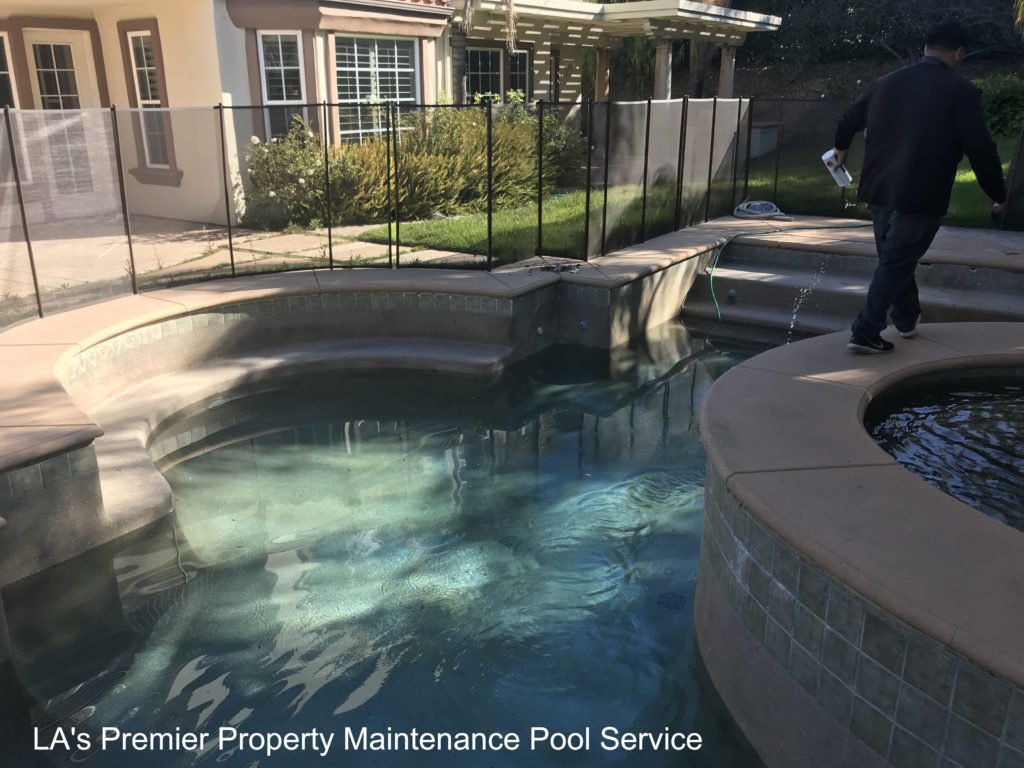 How to clear green swimming pool water los angeles - How to clear green swimming pool water ...